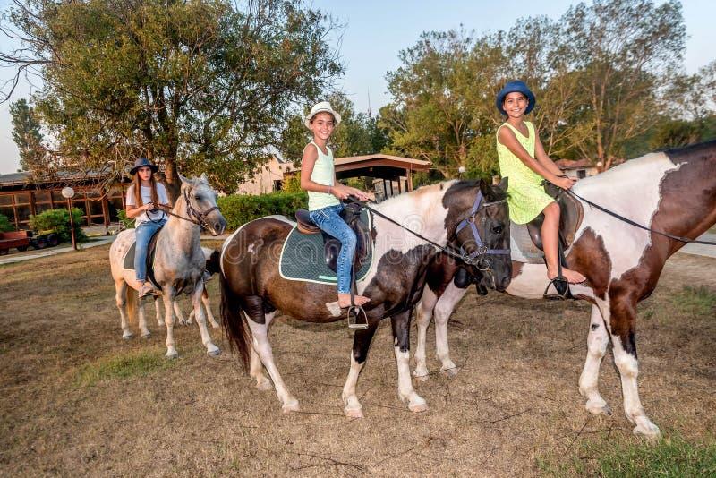 Mädchen mit einem Hut auf Reitpferden stockbilder