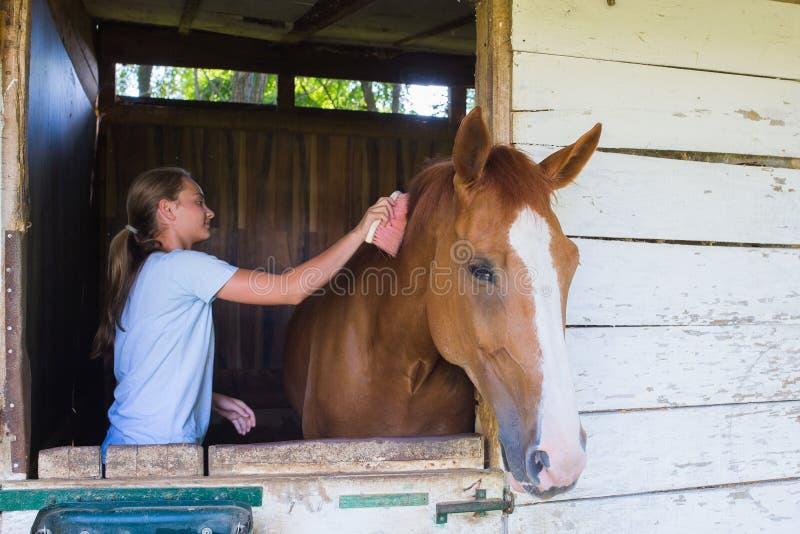 Mädchen mit einem Pferd lizenzfreies stockbild
