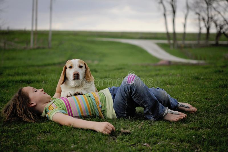 Mädchen mit Hund stockfotos