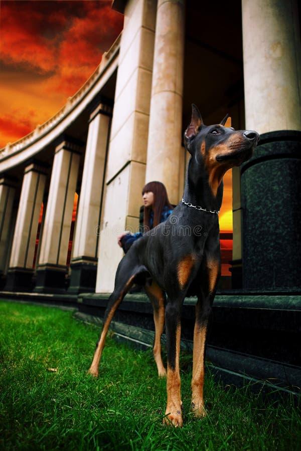 Mädchen mit Hund stockbild