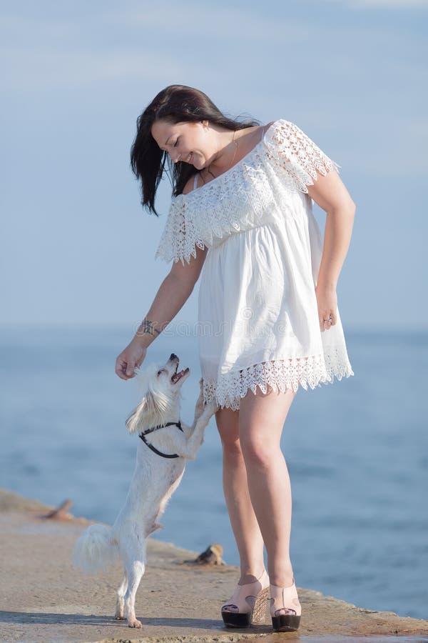 Mädchen mit Hund auf seafron lizenzfreies stockfoto