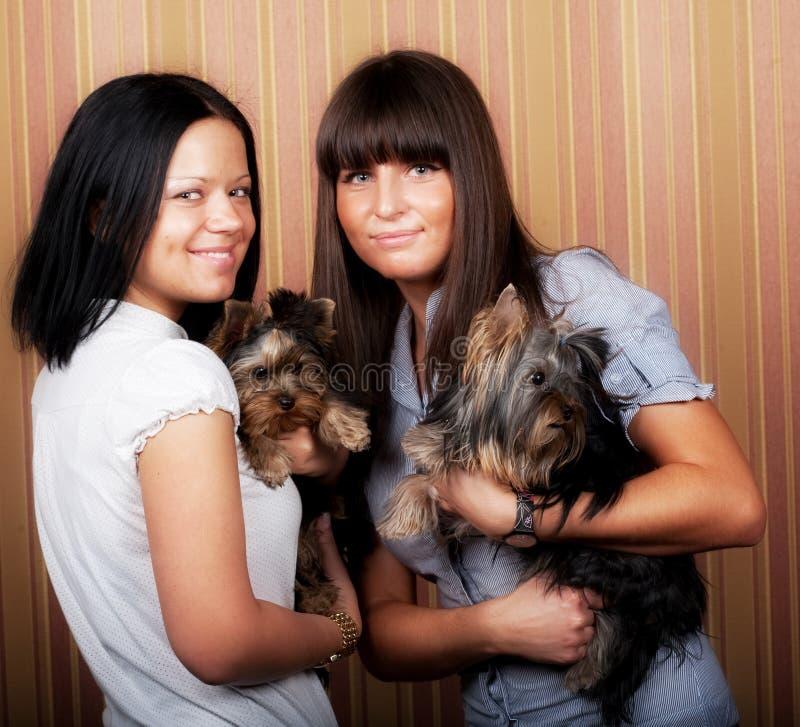 Mädchen mit puppys stockfoto