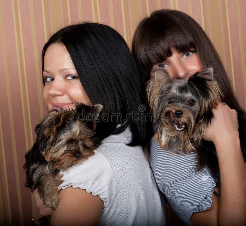 Mädchen mit puppys stockfotografie
