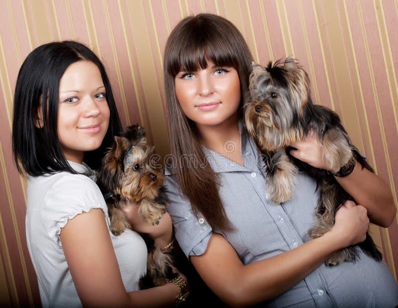 Mädchen mit puppys lizenzfreie stockfotos