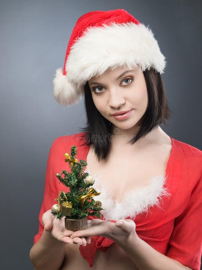 Mädchen mit Weihnachtsbaum lizenzfreies stockfoto