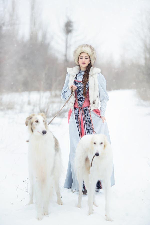 Mädchen mit zwei Windhunden, die in Winter gehen stockfotos