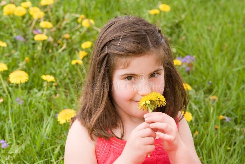 Mädchen-riechende Blume stockbilder