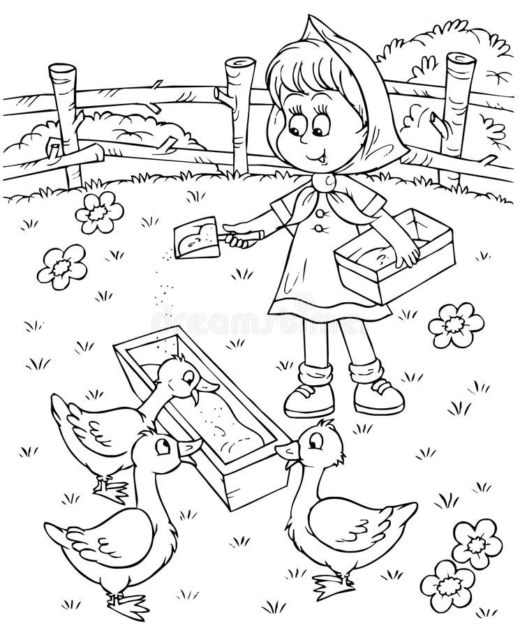 Mädchen speist Enten stock abbildung