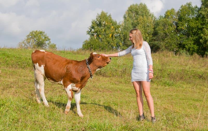 Mädchen streichelt Stier lizenzfreie stockbilder