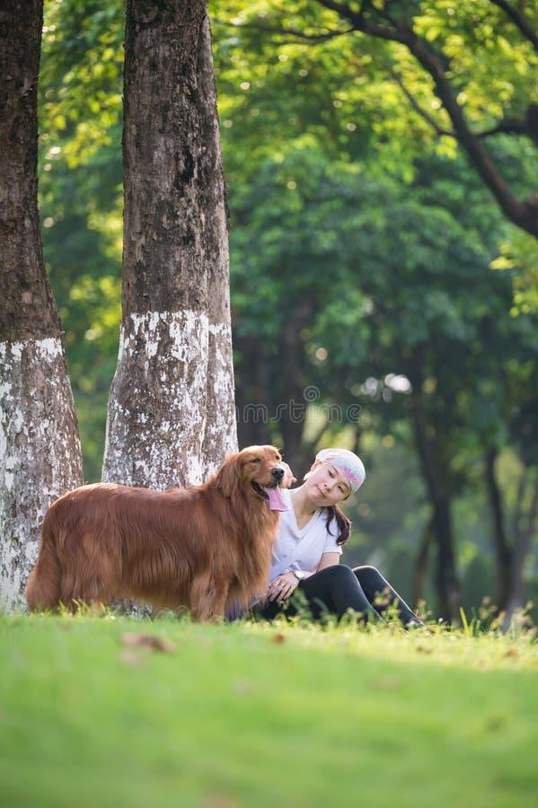 Mädchen und golden retriever, die im Gras spielen stockbild