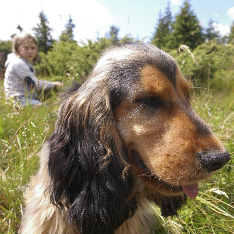 Mädchen und Hund in der Landschaft lizenzfreies stockbild