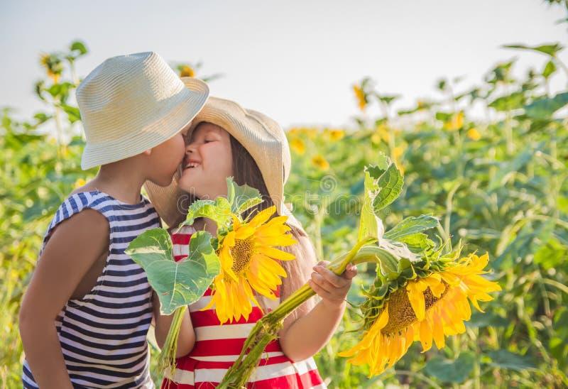 Mädchen und Junge, die unter Sonnenblumen küssen stockbilder