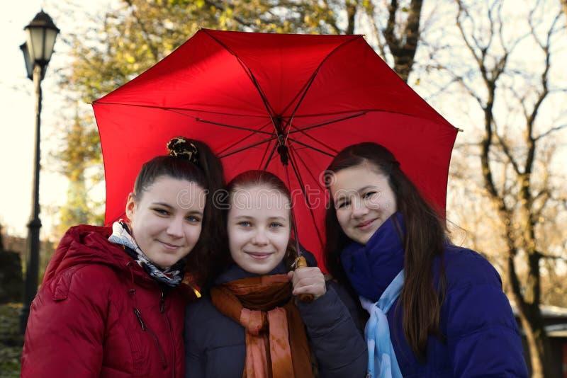 Mädchen unter Regenschirm stockfoto