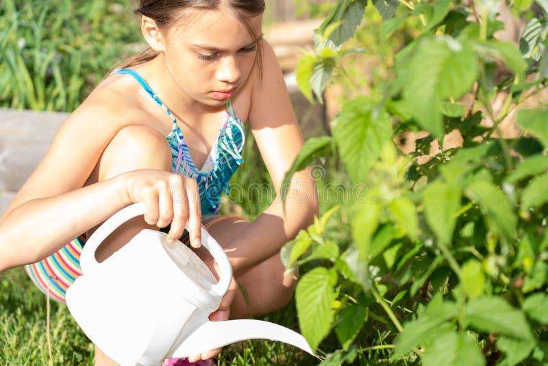 Mädchenbewässerungsanlagen lizenzfreie stockbilder