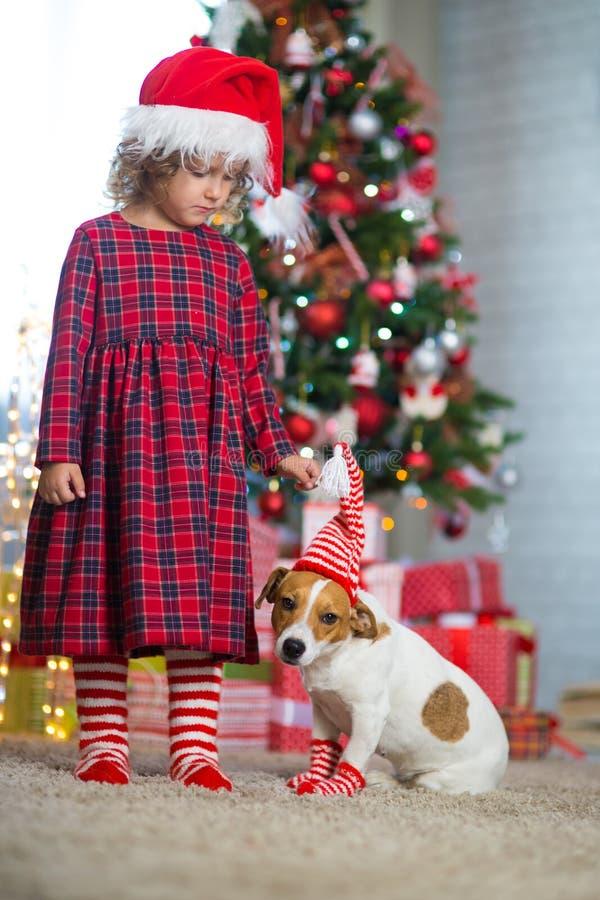 Mädchenkind feiert Weihnachten mit Hund lizenzfreies stockfoto