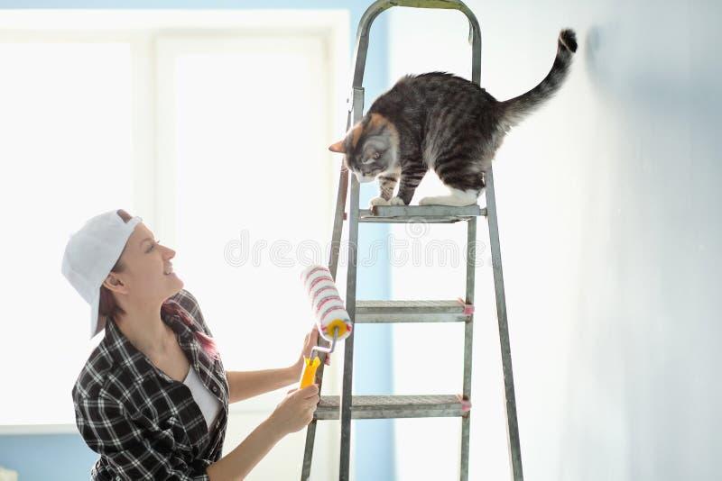 Mädchenmaler, -designer und -arbeitskraft malt eine Rolle und bürstet die Wand Die Katze sitzt nahe bei der Leiter und betrachtet stockfotos