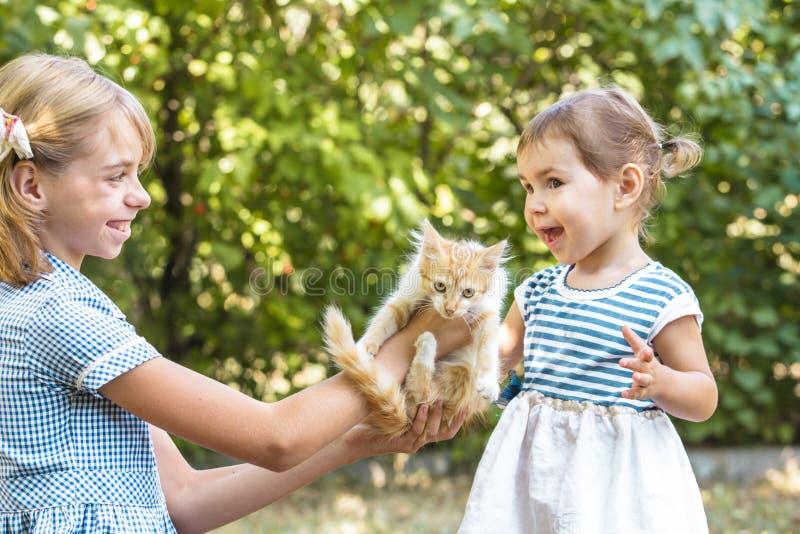 Mädchenspiel mit Kätzchen stockfotos