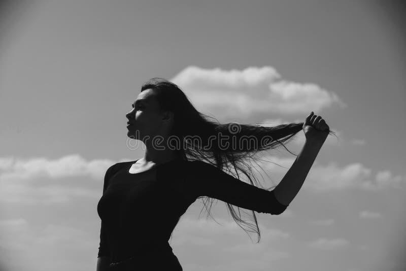 Mädchenvertretung lang, gesundes, brunette Haar lizenzfreie stockfotos