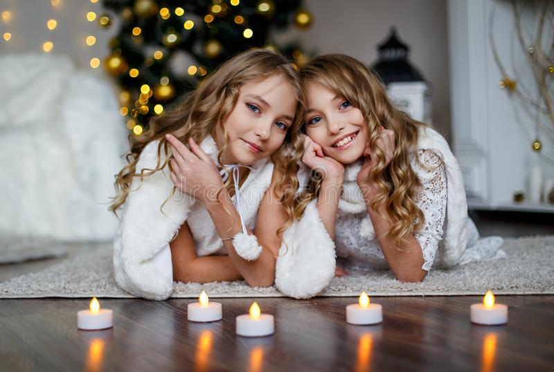 Mädchenzwillinge vor dem Pelzbaum stockfotos