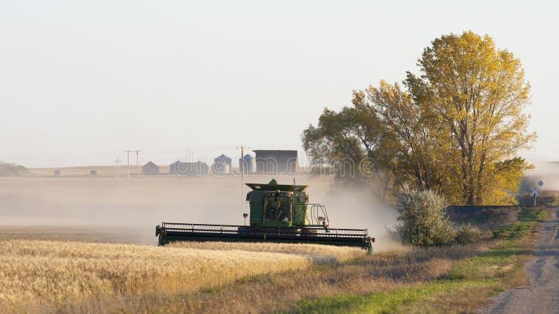 Mähdrescher auf einem Weizengebiet lizenzfreie stockfotos