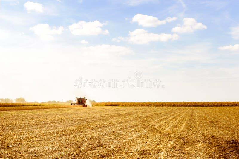 Mähdrescher, der Sojabohne am Feld erntet stockbilder