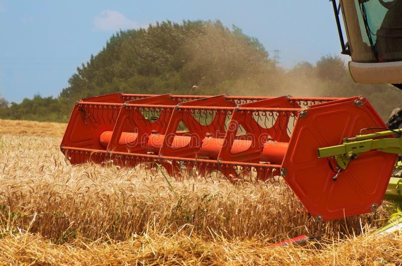 Mähdrescher Ernten des Weizens lizenzfreies stockfoto