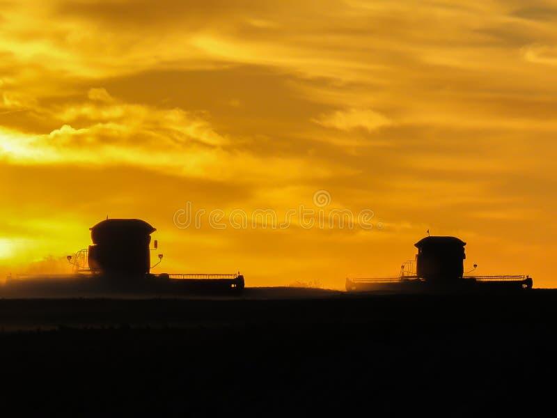 Mähdrescher im Sonnenuntergang lizenzfreie stockfotos