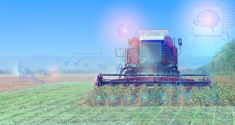 Mähdrescherernten ernten, Begriffsdarstellung der Interaktion der Technologie in der landwirtschaftlichen Industrie und der Gebra lizenzfreie stockbilder