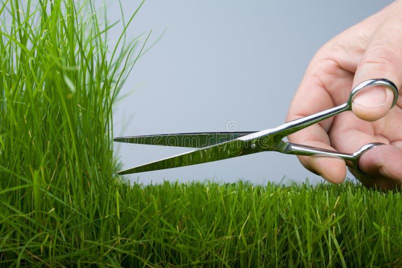 Mäher u. Gras lizenzfreie stockbilder