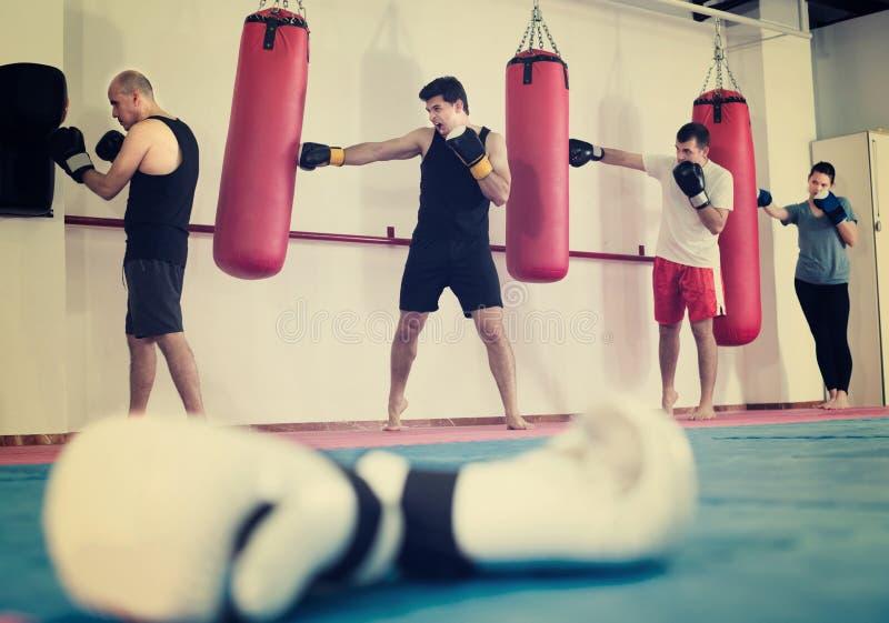 Män och kvinnaboxare slår boxningpåsar royaltyfria foton