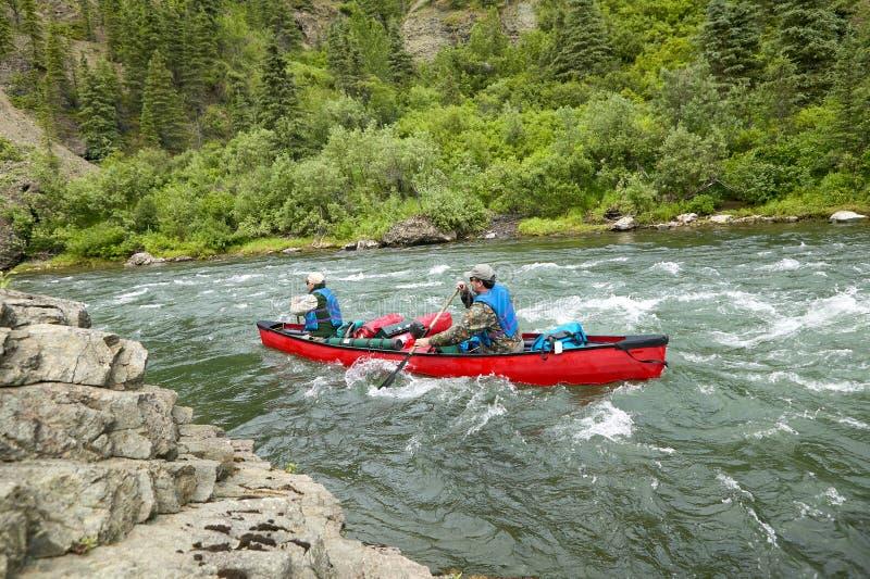 Män som kanotar på grova flodforsar i lösa Alaska arkivfoton
