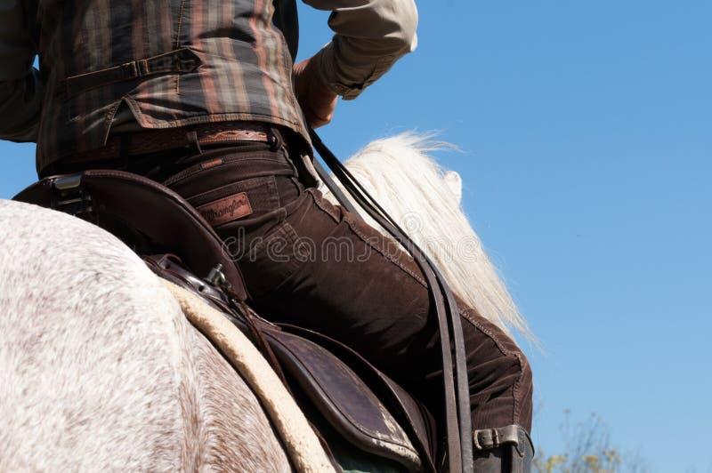 Män som rider en vit häst Lowen metar besk?dar royaltyfri foto