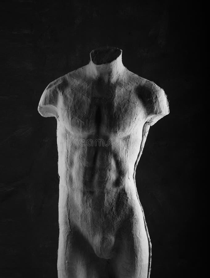 Erfreut Anatomie Der Glatten Muskulatur Galerie - Menschliche ...