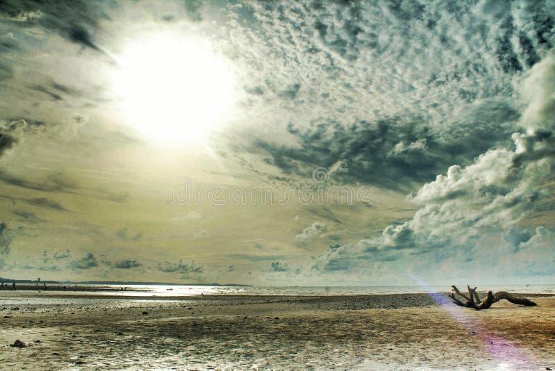 Männchen-Strand lizenzfreie stockbilder