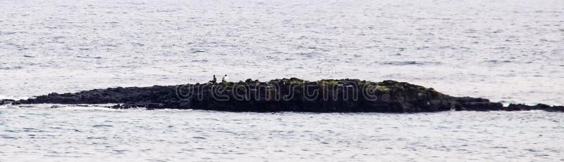 Männer, die auf Aufnahme von einem Felsen im Meer warten lizenzfreie stockbilder