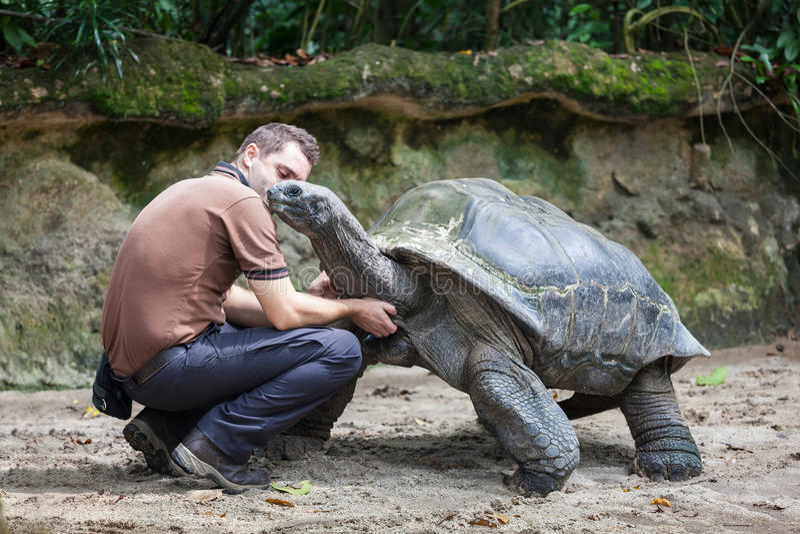 Männer und Schildkröte stockfotografie