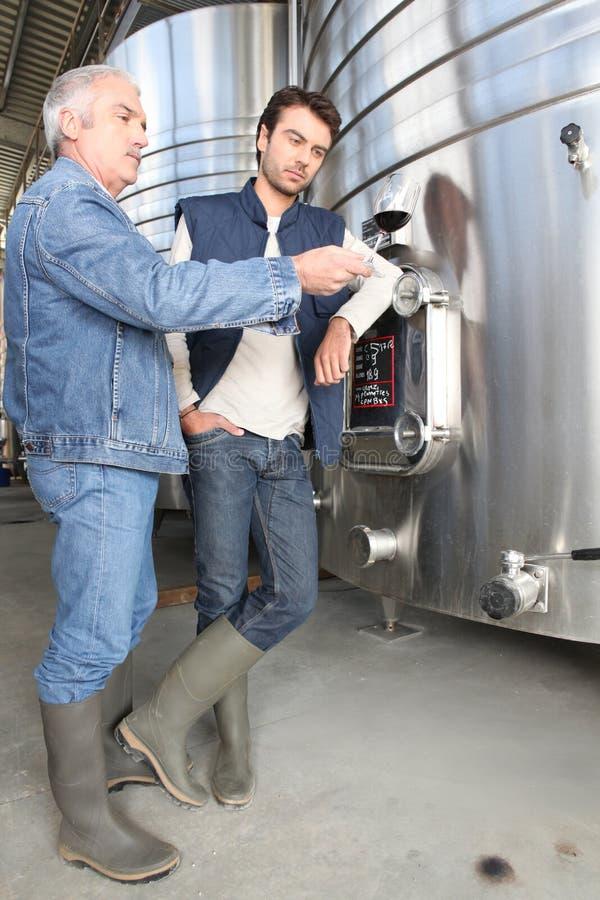 Männer, welche die Übertragungsgüte des Weins behandeln lizenzfreie stockfotos