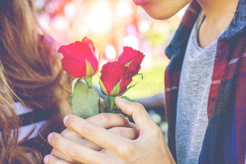 Männer, welche die Rotrose gibt Frauen Rotrose an Valentinsgruß ` s Tag halten Konzept mit Sonnenunterganghintergrund stockfoto