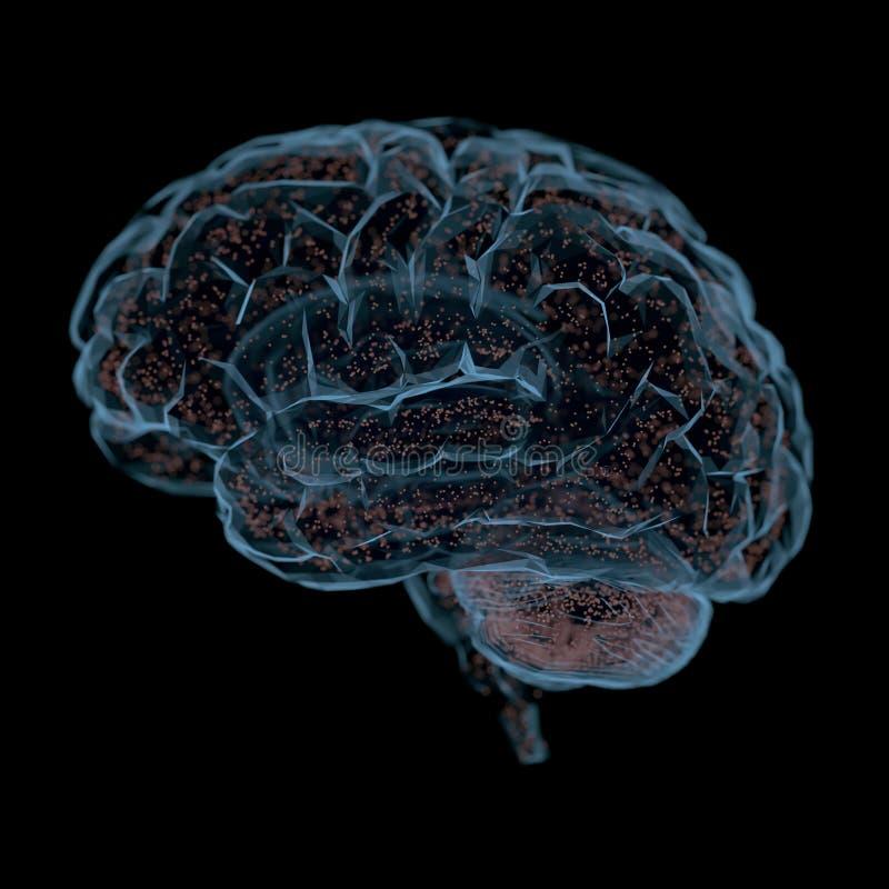Människa Brain Power Connections stock illustrationer