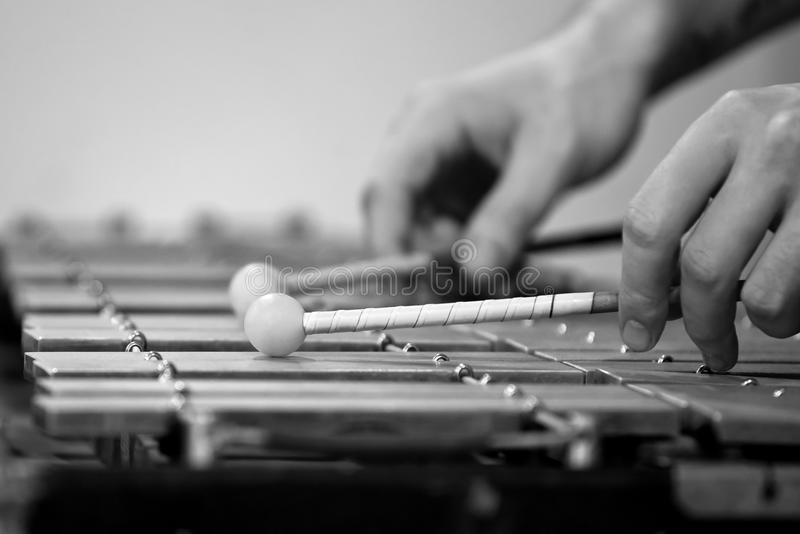 Människahänder som spelar en glockenspiel arkivbild