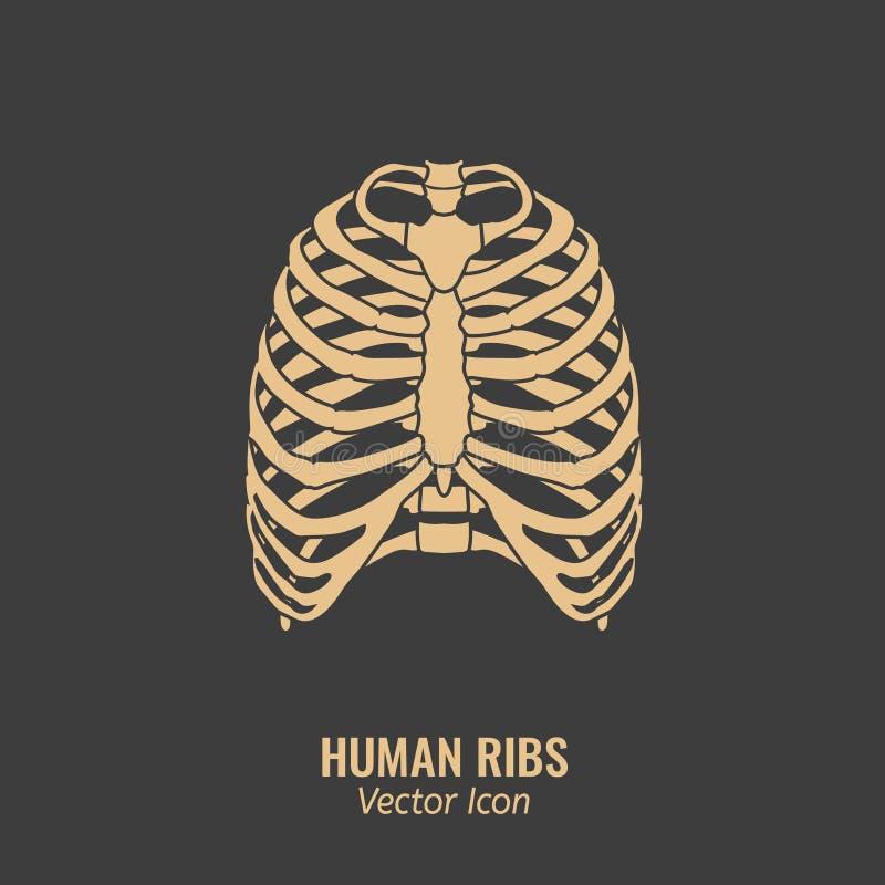 Människan ribs symbolen vektor illustrationer