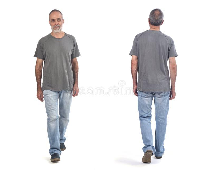 Människans framsida och baksida går på vit bakgrund arkivbilder