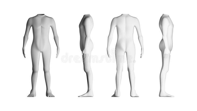 Människokroppar med inget huvud model white för bakgrund _ vektor illustrationer