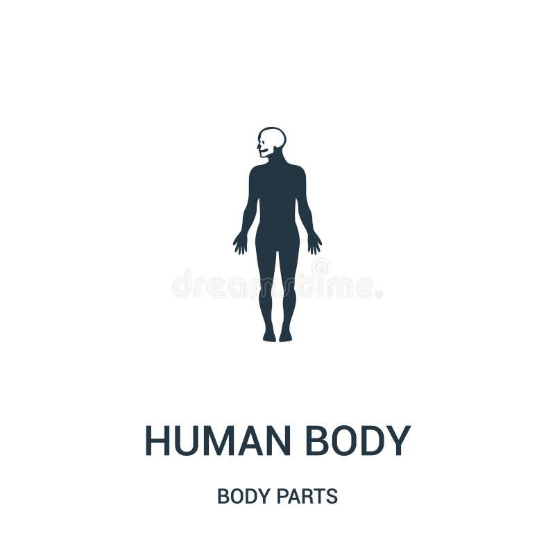 människokroppkontur med fokusen på huvudsymbolsvektorn från kroppsdelsamling Tunn linje människokroppkontur med fokusen på royaltyfri illustrationer