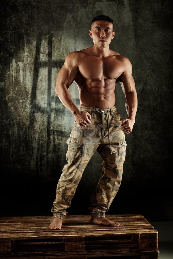 Männliche Bodybuilderaufstellung stockfotos