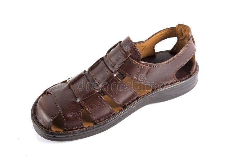 Männliche Brown-Sandale, Draufsicht lizenzfreies stockbild