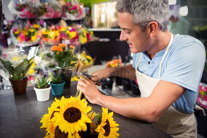 Männliche Floristenzutatstämme von Blumen am Blumenladen lizenzfreie stockfotos