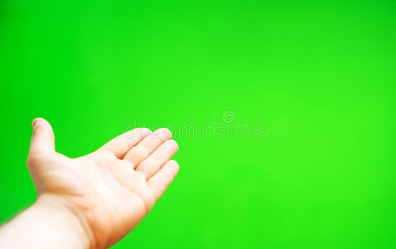 Männliche Hand bietet etwas an stockfotografie