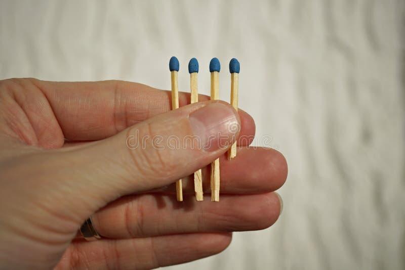 Männliche Hand, die vier Sicherheitsmatchstöcke versteckt in der Palme mit einem Matchstock kürzer als die anderen hält lizenzfreies stockbild