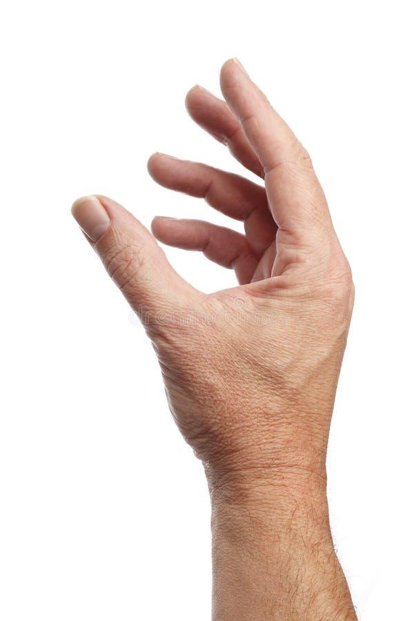 Männliche Hand Getrennt auf einem weißen Hintergrund stockfotos